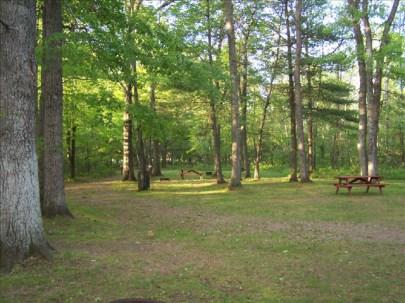 Pine Harbor Campground4