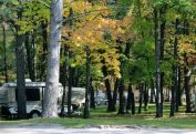 Campground View