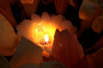 candle surrounded by flowers