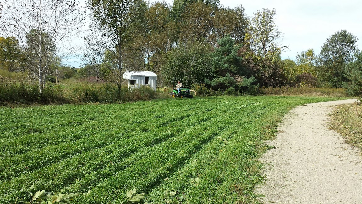 20150929_mowing food plot near deer blind 1