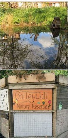 Galleywall Nature Reserve photo collage