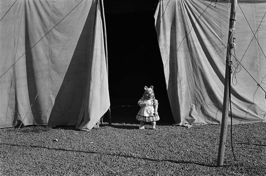 Paz Errázuriz: Circo (Circus)