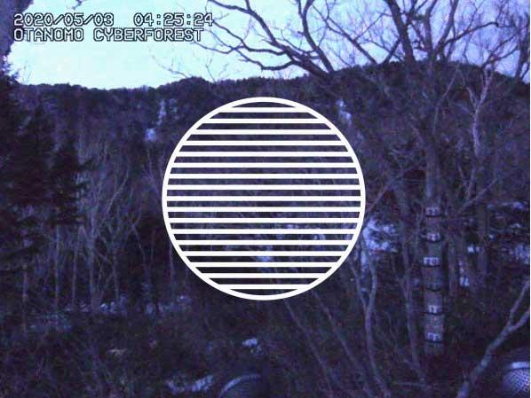 Reveil_SC8 Off Grid