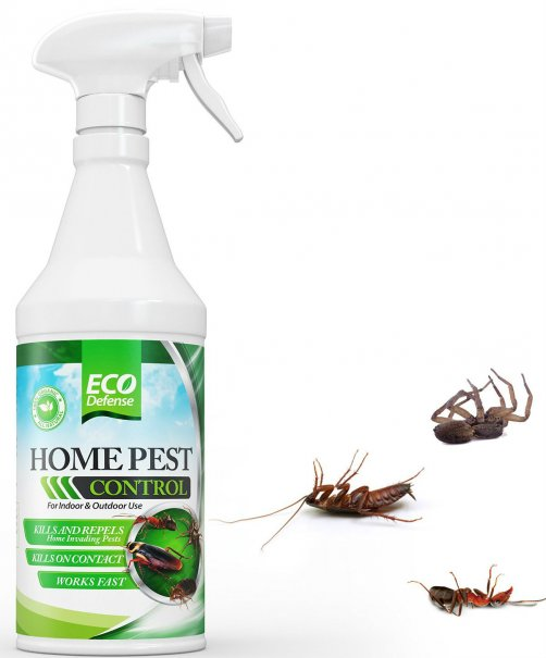 We Treat For Ants Fleas Spiders Centipedes Millipedes Ticks Silverfish Roaches Bees Wasps Clothing And Stored Product Pests Bed Bugs Termites