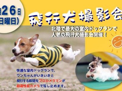 4/26(日)に大好評の飛行犬撮影会を開催!写真集にも無料掲載!