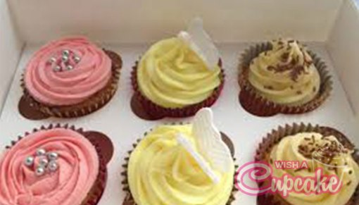 Assorted paradise cupcakes