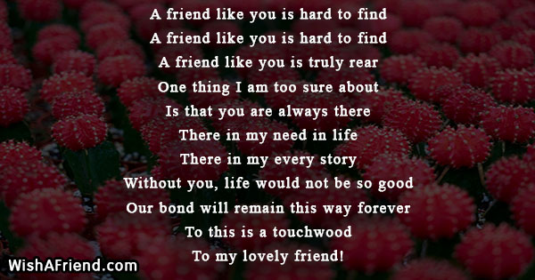 A Friend Like You Is Hard To Find True Friends Poem