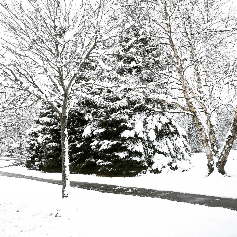 instagram-a-snowy-day-scene