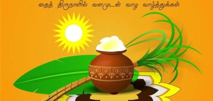 pongal-whatsapp-status