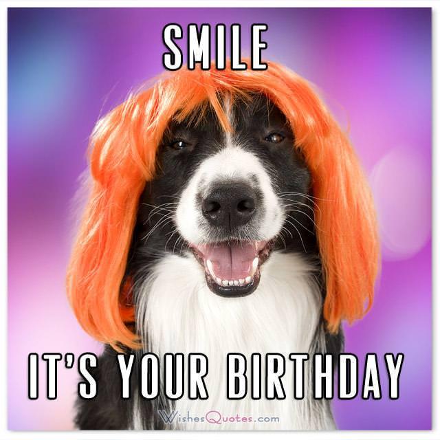 Funny Jokes Put Birthday Card