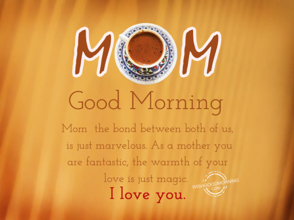 I Love You Mommy Quotes