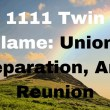 1111 Angel Number Twin Flame