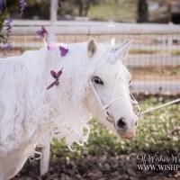 WishPony White Classic Unicorn Horn