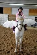 Pegasus Wings & Unicorn Browband™ for Ponies