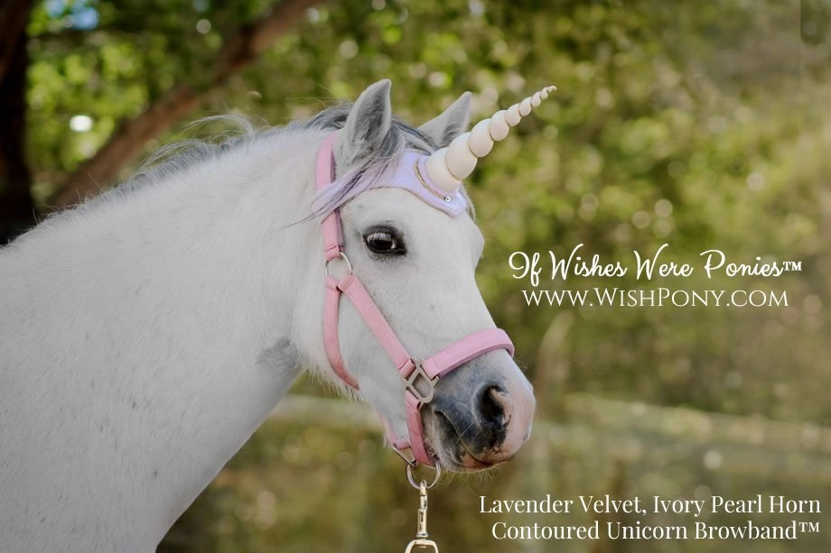 The Original Inventor of the Unicorn Browband™