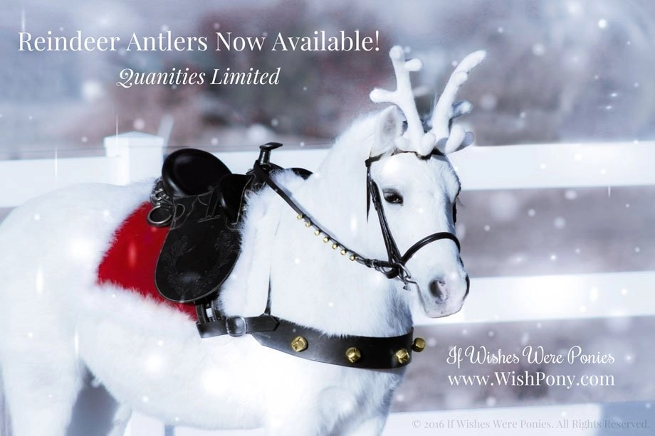 Christmas Reindeer Antlers for Horses & Ponies Now Available!