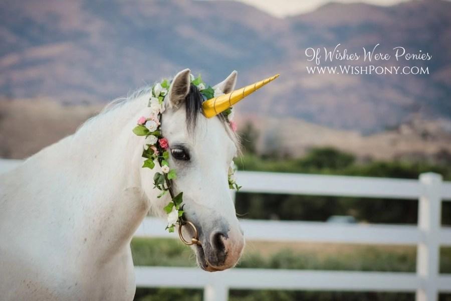 Gold Unicorn Horn for Horse Pony