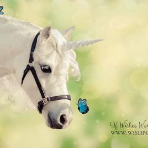 WishPony Unicorn with Blue Monarch Buttefly