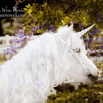 White Purple Unicorn Horn