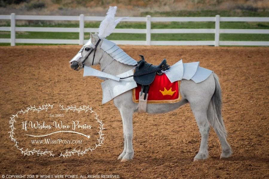 Horse Armour Costume