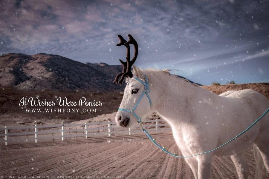 WishPony Reindeer Antlers for Miniature Horses & Ponies 2018