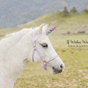Wishpony.com Rainbow Unicorn Browbands for Horses
