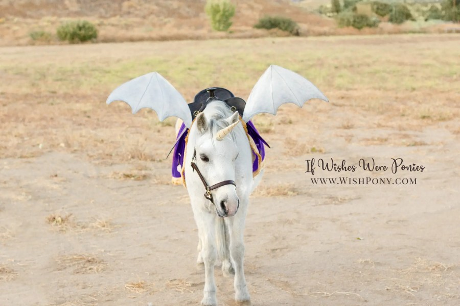Wishpony.com Platinum Dragon Wings for Horses