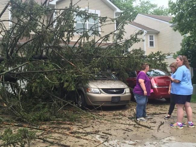 Storm Damage_171645