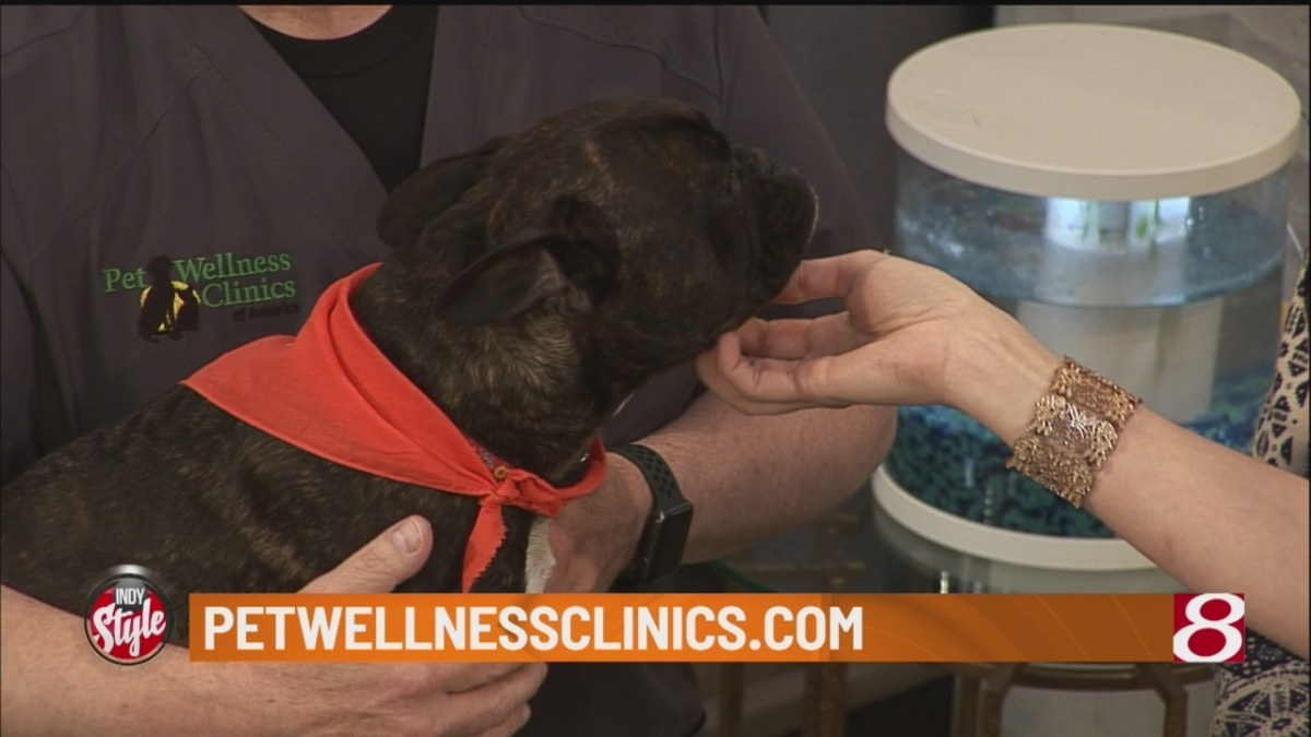 Heartworm symptoms to look for in your pets