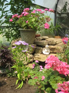 butterfly exhibit and farm tour