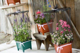 Butterfly Garden Bouquet