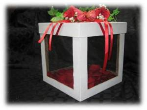 display butterfly-release-box