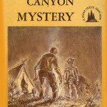 Wild Horse Canyon Mystery Book Cover