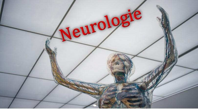 Die Forschung in der Neurologie wird immer bedeutender