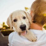 Simple Tips to Keep Your Dog Happy