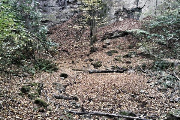 Leselaunen | Oktober – Goldener Herbst und Buchteddy