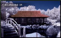 filtre photo infra-rouge