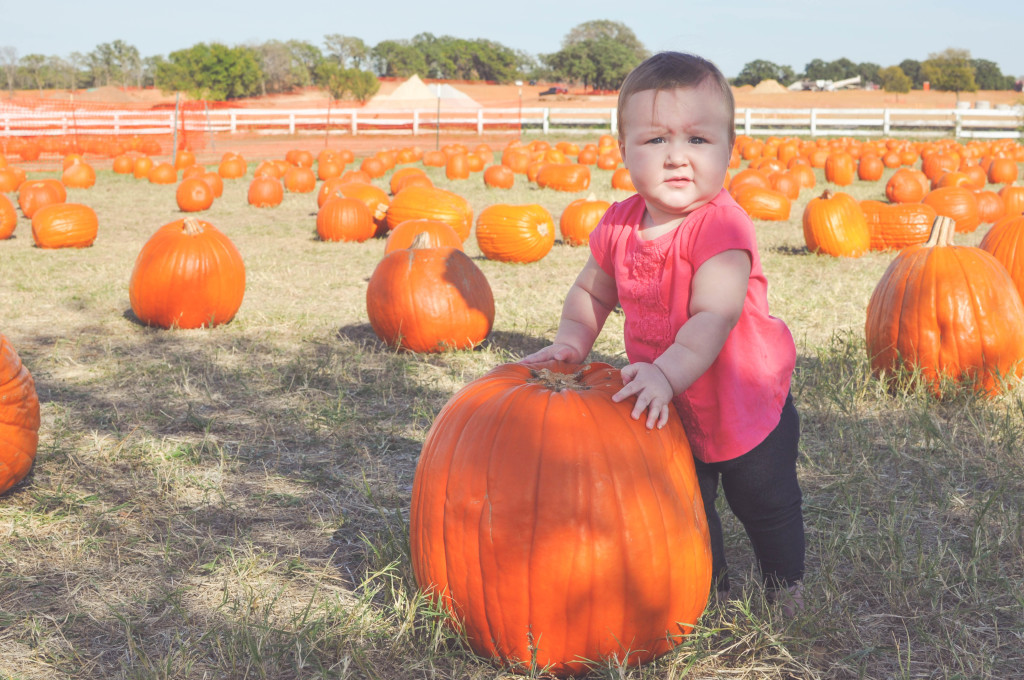 Pumpkin Patch (10 of 52)