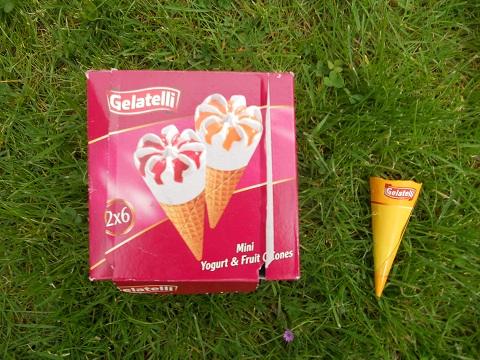 mini-ijsje2