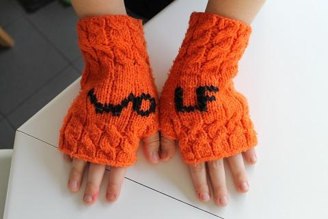 handschoen1