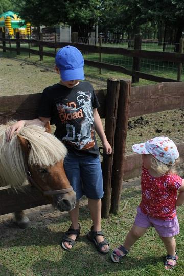 kinderboerderij3