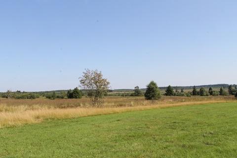 Ardennen02