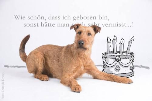 Geburtstags_Bolle