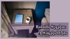 """Banner reading """"Bedside Staple: A Simple Dildo"""""""
