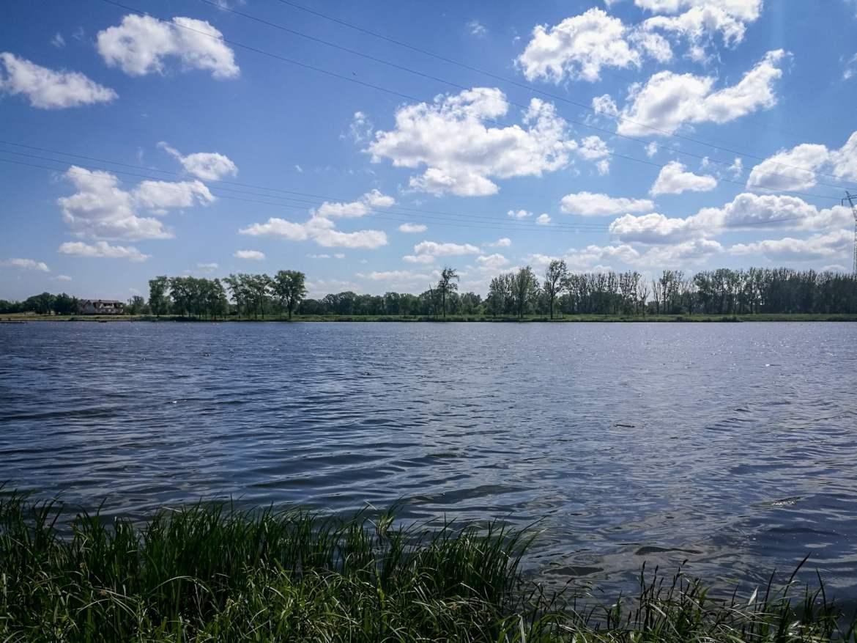 The Brda River