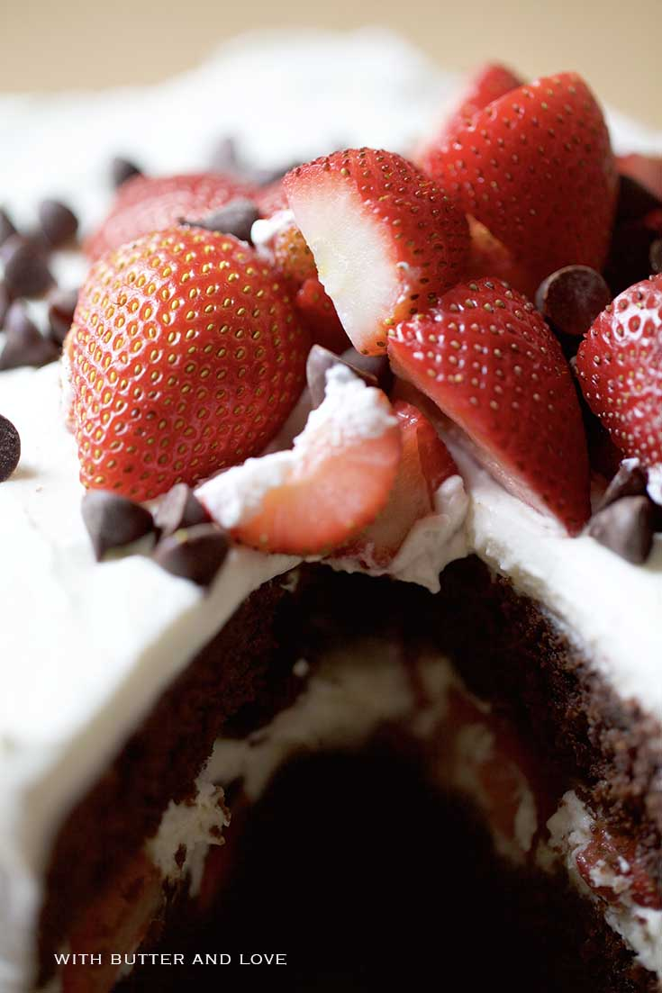 Chocolate Strawberry & Mascarpone Layer Cake || www.withbutterandlove.com