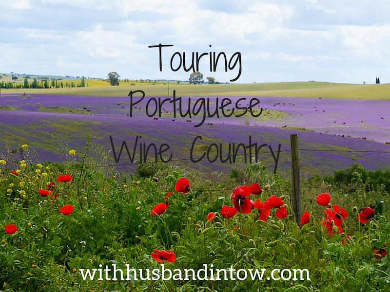 Portuguese Wildflowers