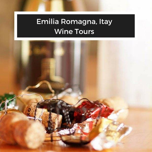 Wine Tourism and Wine Travel
