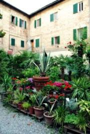 My home in Siena - Piazza dell'Abbadia 6