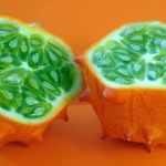 Cucumber Melon Scented Sugar Scrub
